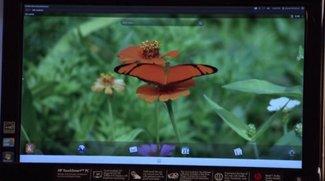 HP auf der Suche nach weiteren Entwicklern für Open webOS