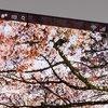 Japan Display präsentiert 5,4 und 6,2 Zoll Panels mit 2560 x 1440 Pixeln für Smartphones
