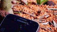 Samsung Galaxy Note 6 mit USB Typ C und neuer Gear VR erwartet